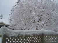 Snow_07_1