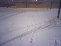Snow_tracks_07